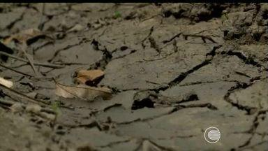 Governo decreta emergência em 152 cidades do Piauí por causa da estiagem - Para o decreto de emergência foram levados em conta as perdas agrícolas, o índice pluviométrico e os níveis dos reservatórios.