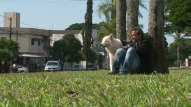 A capital da Amizade faz aniversário e o Paraná TV fala sobre vários tipos de amizades - Conheça algumas histórias.