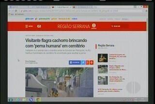 Cachorro brincando com corpo humano em camitério é um dos destaques do G1 da Inter TV - Confira os demais destaques do vídeo.