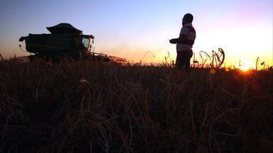 Produtores gaúchos criam vila e desenvolvem agricultura no alto das chapadas do Piauí - Nova fronteira agrícola brasileira já é responsável por 10% da produção nacional de grãos.