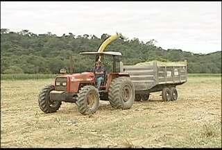 Conheça a Carreta Agrícola, veículo tem facilitado a vida do homem do campo - Veículo é feito de inox.