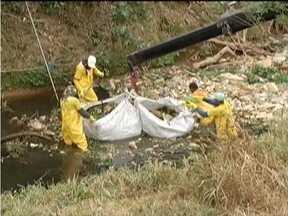 Cinquenta toneladas de lixo são retiradas do Rio Vieiras em Montes Claros - Segundo o Comitê da Bacia do Verde Grande, o rio é um dos mais poluídos do Norte de Minas.