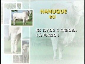 Confira como está o mercado do boi - Em Nanuque a arroba do boi está sendo comercializado a R$ 137 (a prazo).
