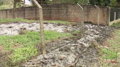 Maringá registra três queimadas ao dia neste início de mês - Umidade do ar baixou bastante na cidade