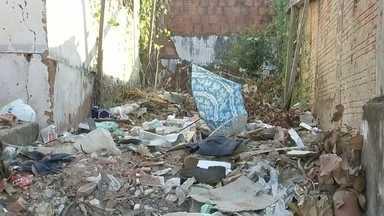 Moradores de Bauru reclamam da quantidade de lixo nas ruas da cidade - Poucas coisas deixam um morador mais irritado do que o desleixo, seja dos vizinhos, que jogam lixo nos terrenos baldios, seja da prefeitura, que não consegue proibir que espaços públicos se transformem em lixões. A equipe de reportagem da TV TEM recebeu tantas reclamações pelo aplicativo TEM Você, que resolveu fazer o giro da falta de limpeza.