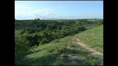 Homem é morto por picadas de abelhas no Sul do ES - Orlando Alves Bela sai para pescar na tarde dessa segunda-feira (17).O corpo foi encontrado em uma lagoa que estava cercada por abelhas.