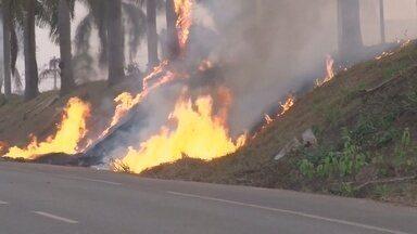 Cresce número de focos de incêndio em Cacoal - Diariamente o Corpo de Bombeiros recebe de 3 a 6 chamados para apagar focos.
