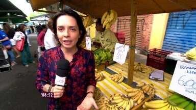 Nadia Bochi vai à feira com economista explicar a alta do dólar - Ao lado de Samy Dana, repórter converte o valor do dólar em bananas