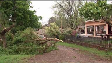 Vendaval deixa estragos em 32 cidades do estado - Muitas casas ficaram destelhadas e sem energia elétrica.
