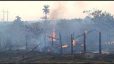 Número de queimadas aumenta e preocupa produtores em Goiás - Chamas avançam sobre tanques de combustíveis, arrasam fazendas e deixam rastro de destruição.