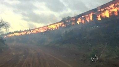 Curto circuito em propriedade rural pode ter iniciado incêndio de vagões em Valparaíso - Uma imagem registrada na terça-feira (8) na região de Araçatuba (SP), foi notícia em todo país. Um trem em movimento que vinha de Três Lagoas (MS) com destino a Santos (SP) pegou fogo no trecho entre Lavínia (SP) e Valparaíso (SP). A causa do incêndio teve início depois de um curto circuito na rede elétrica de uma propriedade rural.