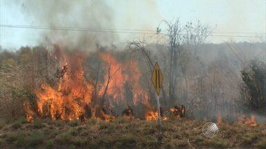 Tempo seco aumenta queimadas no interior da Bahia - Só na região de Barreiras foram registrados 21 focos.