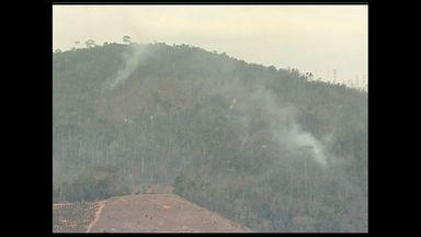 Incêndio em Marilândia está 90% controlado, dizem bombeiros do ES - Apenas pequenos focos ainda permanecem no interior da mata.Incêndio já dura 3 dias e fogo consumiu área de 1,3 mil campos de futebol.