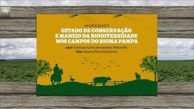 Confira festas e eventos rurais desta semana pelo país - Em Minas, acontece uma conferência de café sustentável, em Machado, e um encontro de produtores de leite, em São João Del Rei.