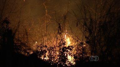 Incêndio de grande proporção atinge parque às margens da BR-060 entre Goiânia e Anápolis - As equipes dos bombeiros já controlaram as chamas no Parque Ecológico Altamiro Moura Pacheco, mas, segundo a Polícia Rodoviária Federal, o fogo às margens da rodovia está alto.