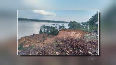 Barranco desaba e soterra gados no interior do Amazonas - Caso ocorreu na cidade de Tonantins.