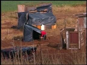 Mais de 100 famílias invadiram um terreno que pertence ao aeroporto em Erechim, RS - Barracos estão sendo construídos e luz e água puxados de vizinhos.