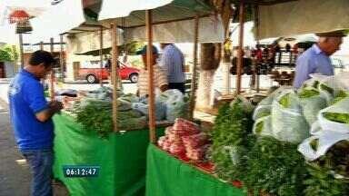 Município de Caririaçu realiza feira de produtos orgânicos - A feira é realizada todos os sábados pela manhã.