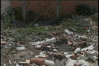 Terrenos baldios no bairro Loteamento Recife viram moradia para ratos e insetos - O acúmulo de lixo só aumenta o problema.