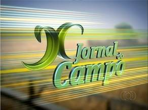Confira as notícias do campo no JC deste domingo (27) - Confira as notícias do campo no JC deste domingo (27)