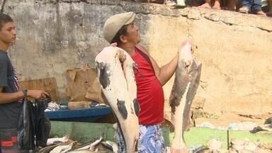 Grupo vende peixe ilegalmente no Mercadão - Ação tem sido obstáculo para a Prefeitura de Manaus