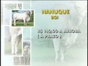 Confirma com está o mercado do boi na Região - Em Nanuque, uma arroba da vaca está sendo comercializada a R$ 120, a prazo.