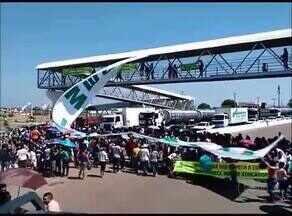 Professores municipais de Palmas protestam e fecham a TO-050 - Professores municipais de Palmas protestam e fecham a TO-050