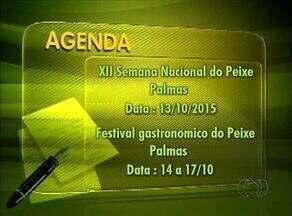 Confira a lista de eventos e cursos no Tocantins - Confira a lista de eventos e cursos no Tocantins