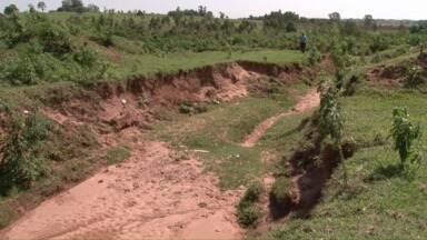 Chuvas prejudicam um gargalo antigo no campo, a erosão - Técnicos orientam medidas para conservar melhor o solo e evitar prejuízos