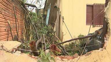 Ventos chegam a 60km/h na madrugada em Ribeirão Preto, SP, e causam danos - A semana deve ser de tempo instável nas cidades da região.