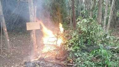 PC prende dupla fazendo uma queimada para construir casas em local de invasão - Dois homens foram presos pela Polícia Civil de Macapá fazendo uma queimada para construir casas no local. A delegacia de meio ambiente de Macapá está monitorando outros casos semelhantes.
