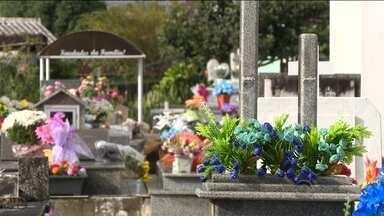 Túmulos de cemitério são construídos em terreno de família em Palhoça - Túmulos de cemitério são construídos em terreno de família em Palhoça