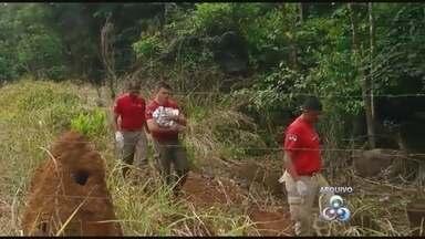 Pais de bebê encontrado morto em rio, em Jaru, vão a júri - Devem ir a juri popular amanhã os pais do bebê encontrado morto num rio no município de Jaru. As investigações da Polícia Civil apontaram que o recém-nascido foi morto antes de ser jogado no rio.