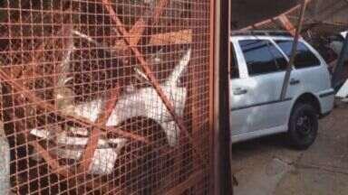 Motorista perde controle da direção e invade loja de carros em Ribeirão Preto - Estabelecimento na Avenida Treze de Maio ficou a frente destruída. O condutor não ficou ferido.