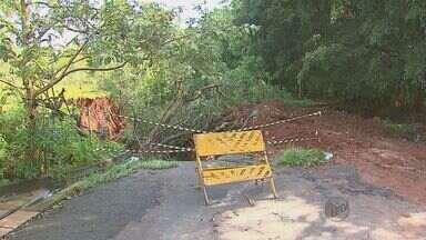 Prefeitura de Araraquara comenta medidas para conter cratera mostrada em reportagem - Buraco aumenta com as chuvas e preocupa moradores do Jardim do Bosque.