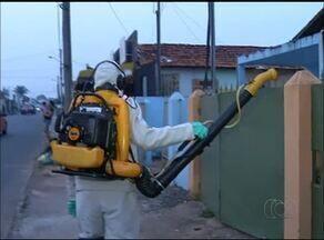 CCZ intensifica trabalhos de prevenção contra o Aedes aegypit em Araguaína - CCZ intensifica trabalhos de prevenção contra o Aedes aegypit em Araguaína