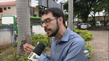 Secretária de Saúde de Minas Gerais lança campanha de combate à dengue - Secretária de Saúde de Minas Gerais lança campanha de combate à dengue