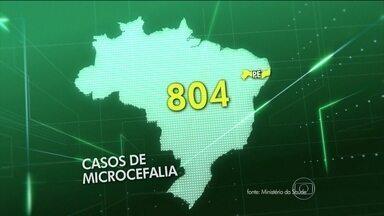 Número de casos de microcefalia aumenta de novo no Brasil - Aumento foi de 41% em uma semana. Depois de PE, o ES ganha o apoio do Exército para combater o Aedes aegypti.