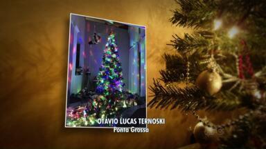Paraná TV mostra fotos de telespectadores - Registros são da decoração de Natal e foram mandados pelo aplicativo 'Você na RPC'.