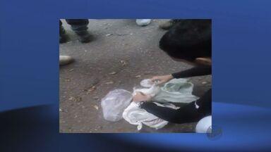 Operação de combate às drogas prende quatro suspeitos no Sul de MG - Operação de combate às drogas prende quatro suspeitos no Sul de MG