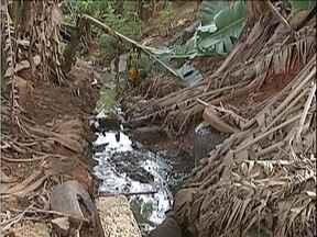 Blitz do MG: Moradores do Bairro Limoeiro, em Ipatinga, cobram limpeza de duas avenidas - Rede pluvial se tornou depósito de lixo.