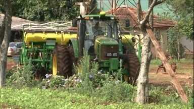 Cooperativas antecipam distribuição dos lucros do ano aos agricultores - Cooperativa de Campo Mourão, no Paraná, foi uma das primeiras a fazer o pagamento. Cooperativas do estado devem fechar o ano com faturamento recorde de R$ 56, 5 bi.