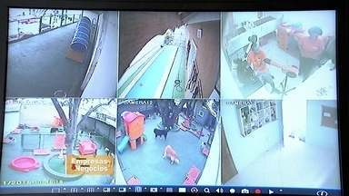 Câmeras de segurança ajudam a vigiar o pet em creche canina - Sistema é ideal para donos que morrem de saudades do seu bicho de estimação.