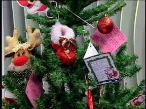 Doações de alimentos ajudam a enfeitar a Árvore do JA - Para ajudar, basta doar alimentos não perecíveis na RBS TV Erechim.