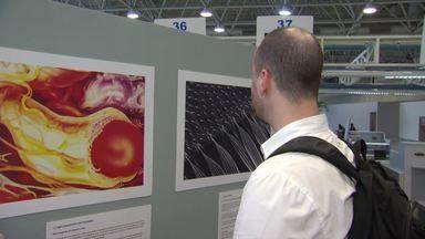 Artbio usa fotografias para chamar a atenção para a Ciência - Acervo formado por pesquisadores de diferentes centros de pesquisquisa do país exibe imagens feitas com o uso do microscópio