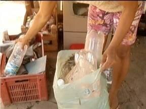 Em Glaucilândia, Emater desenvolve projeto para destinação de recicláveis - Recicláveis podem ser trocados por pintinhos, sementes e mudas de frutas.