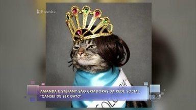 Gato Chico virou febre na internet e tem 140 mil seguidores - Amanda e Stéfany criaram a rede social 'Cansei de Ser Gato' e já lançaram até um livro com a biografia 'autorizada' do felino