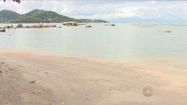Material orgânico encontrado na praia de Sambaqui não tem origem no Rio do Brás - Material orgânico encontrado na praia de Sambaqui não tem origem no Rio do Brás
