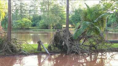 Pesqueiros e áreas da zona rural foram devastados pela chuva - Depois que a água baixou em vários pontos de alagamento foi possível constatar o tamanho dos estragos. O prejuízo foi grande nas áreas de lazer aqui da região norte.