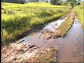 Carros atolam ao passar por estrada em Pirapozinho - SPTV 1ª Edição foi conferir a situação do local.